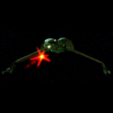 02 Klingon Bird of Pray