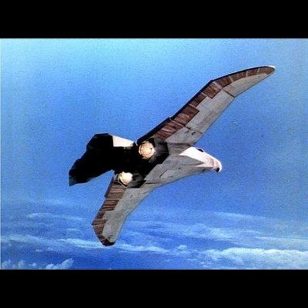 6 Hawk