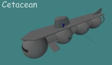 Cetacean 2