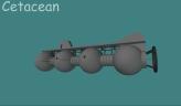 Cetacean 3